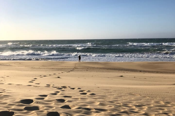 pettmans beach free camping