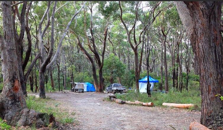Free Beach Camping NSW