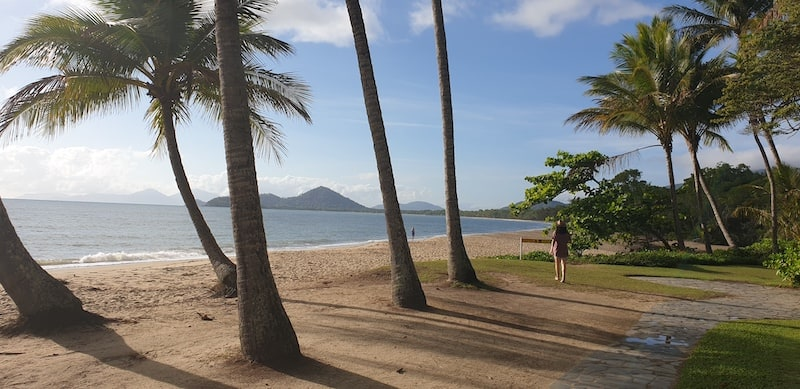 palm cove holiday destination