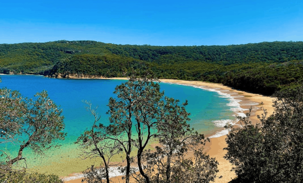 best camping spots - Bouddi National Park