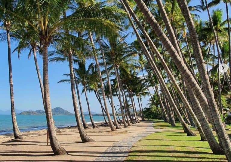 The Amazing Palm Cove Esplanade – Things to do