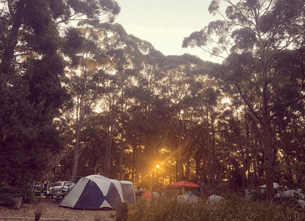 Bristol Point Camping Ground