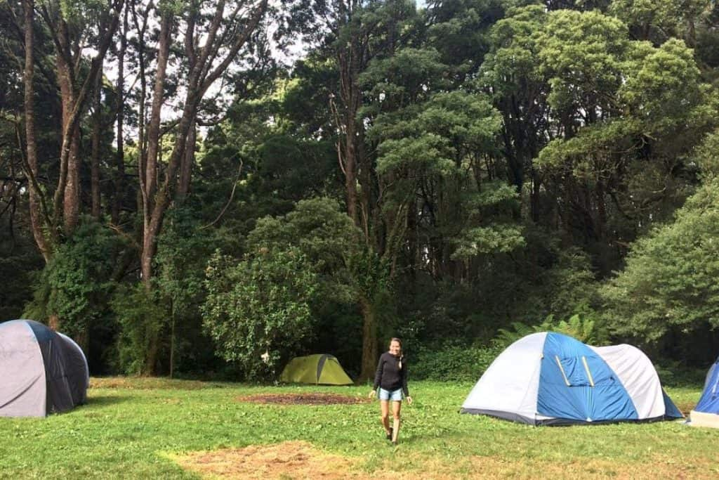 Best Free Camping Spots Victoria
