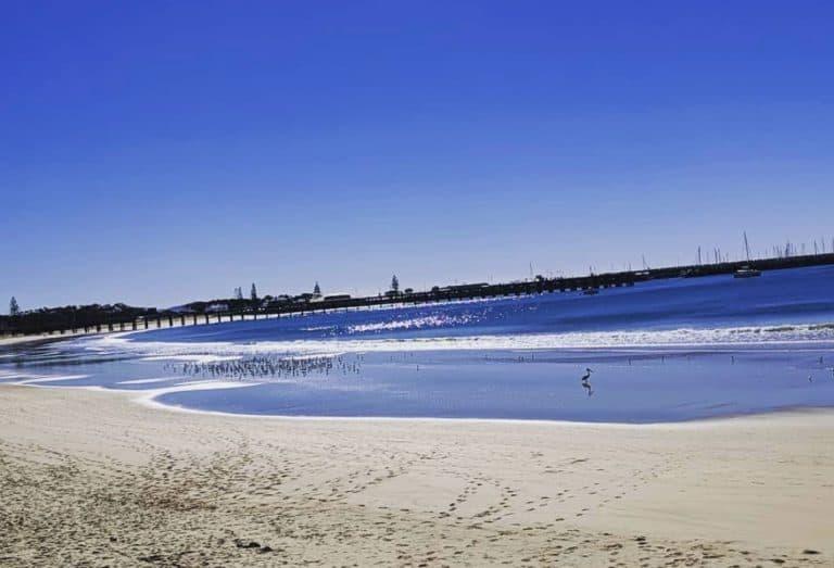 Best camping spots near Coffs Harbour